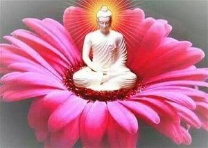 Phật giáo: khoa học, tâm lý học, và tín ngưỡng