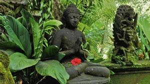 Vài nét về thuyết Nghiệp của đạo Phật trong văn hóa VN