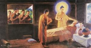 Những nhu cầu tâm linh của người sắp qua đời: Một cái nhìn Phật giáo