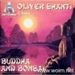 Album: Buddha And Bonsai Vol.2 (china - 1997) - Oliver Shanti & Friends