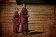Five Environmental Lessons We Can Learn from Buddhist Monks
