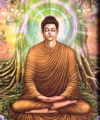 Gautama Buddha spent time under the Sri Maha Bodhi tree