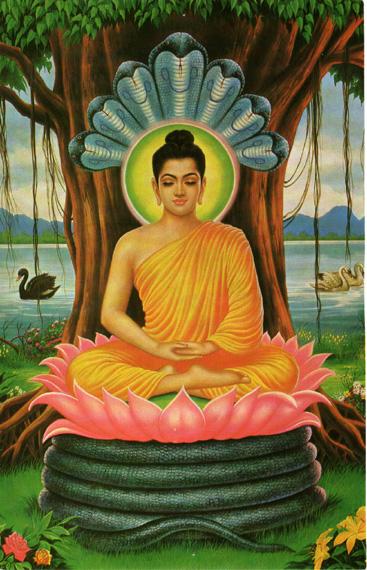 phathoc net english buddhist meditation ashin ottama